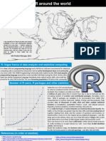 Informative leaflet on the open-source R