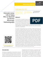 Macromolecular Syntheses in the Pancreatic Acinar Cells of Aging Mice as Observed by Electron Microscopic Radioautography