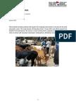Factsheet Livestock Tanzania