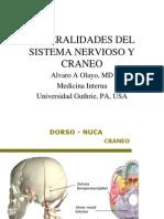 Craneo y Sistema Nervioso