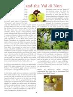 Apples of the Val di Non