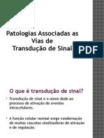 Patologias Associadas as vias de transdução de sinal