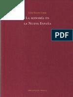 Luis Felipe Fabre - La sodomía en la Nueva España