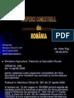 Ciuperci Comestibile Din Romania