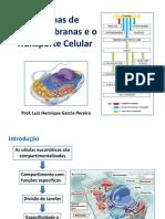 Aula 14-15-16 - Sistemas de Endomembranas e Transporte Celular