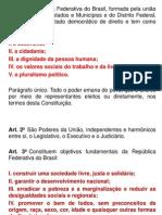 constituição apresentação