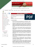 Portal Mackenzie_ Cristianismo e Islamismo No Mundo Atual