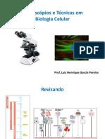 Aula 2 e 3 - Microscópios e Técnicas em Biologia Celular