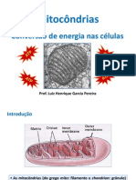 Aula 12 - Mitocondrias