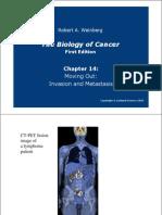 capitulo de biolgia del cancer