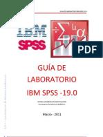 Guia de Laboratorio Ibm Spss 19 123