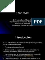 Procesos Biologicos - 08 - Enzimas.13.04.09