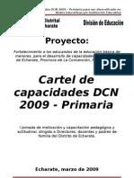 Carteles Dcn 2009 Primaria