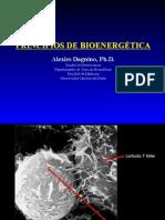Procesos Biologicos - 10 - Bioenergetica.27.04.09