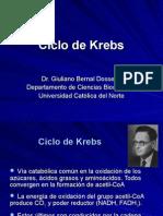 Procesos Biologicos - 13 - Ciclo de Krebs.15.05.09