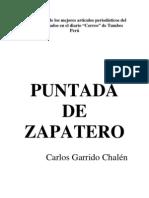 Puntada de Zapatero / Carlos Garrido Chalén (2008)