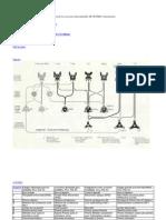 visión general de los accesorios intercambiables SILVESTRES e Instrumentos en wild.docx