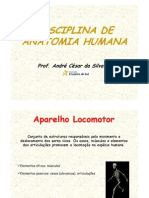 Aparelho Locomotor Psicologia 2013