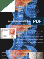 Métodos lesivos_biopsicología