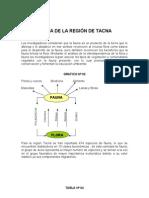 Fauna de Tacna