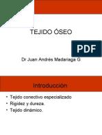 Histologia - 08 - Tejido oseo.11.05.09