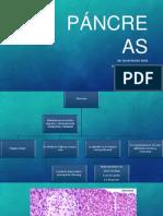 Páncreas Histologia
