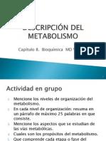 1. Descripcion Del Metabolismo Cap. 8
