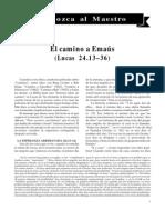 PDF 5246