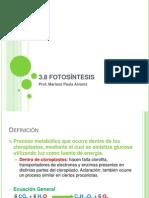 3.8 Fotosíntesis (2011)