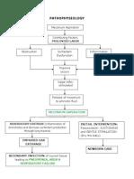 Pathophysiology Meconium