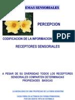 4. neurofisiologia