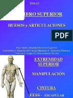 4.1 Miembro Superior Huesos y Articulaciones.ppt