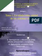 Célulasprocariotasyeucariotas3ª