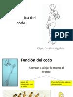 Biomecanica Del Codo y Pronosupinacion