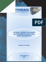 Turorial ArcGIS - Função Union