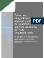 Libro Imss 2013