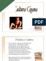 Cultura Cigana 6.07.2009 (1)