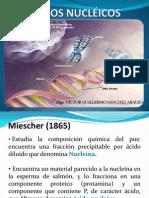3. Ácidos Nucleicos.ppt