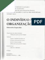 O indivíduo na organização até a pg 53
