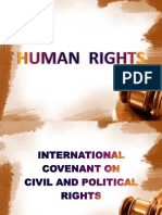 Human Rights Group Report Final