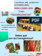 1.-TRANSGENICOS