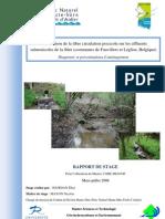 restauration libre circulation piscicole Sûre rapport