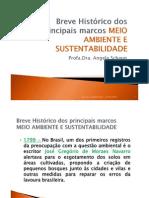 Meio Ambiente e Sustentabildiade - 2011 - 2o