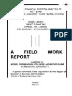 Ranjit Kumar Sah (Field Work Report)