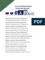 Fixture Copa Tío Eduardo (Autoguardado)