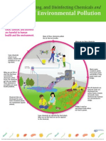 Cycle of Environmental Pollution