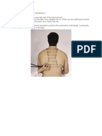 Auscultation of Lungs - Posteriorly