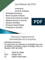 1. Estructura Basica Del PSO