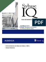 Sybase IQ - Buenas Prácticas