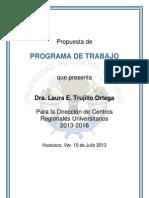 PROGRAMA TRABAJO  DCRU.pdf